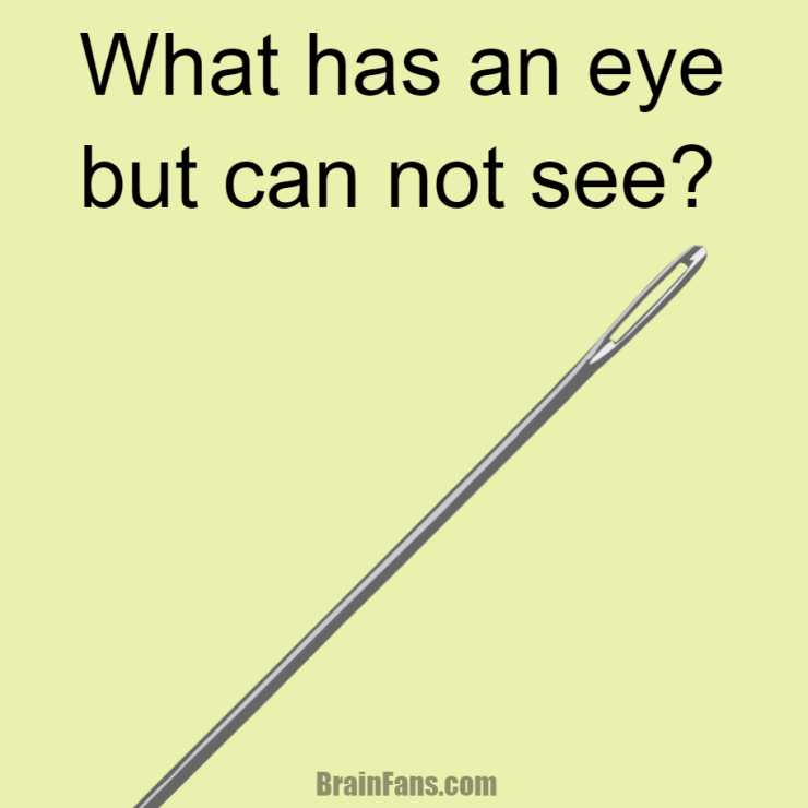 brain-teaser-logic-riddles-what-has-an-eye-but-cannot-see-1658557895593452f40de0b1.80044688